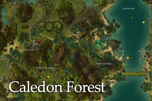Guild wars 2 maps caledon forest map gumiabroncs Image collections