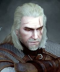 heroes characters in witcher game maps com